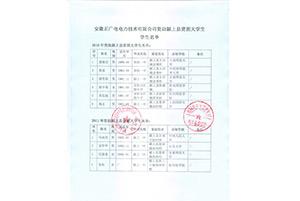 2010-2011年资助颍上县大学生名单