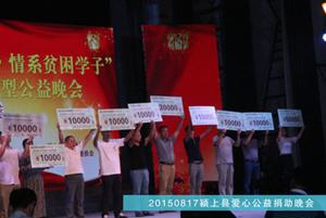 2015年8月颍上县爱心公益捐助晚会